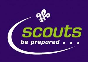 Fun-Scouts-2